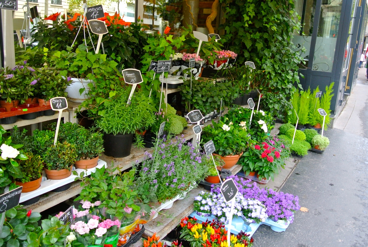 Parisian street flowers - Two Days in Paris via smiletheresgin.com