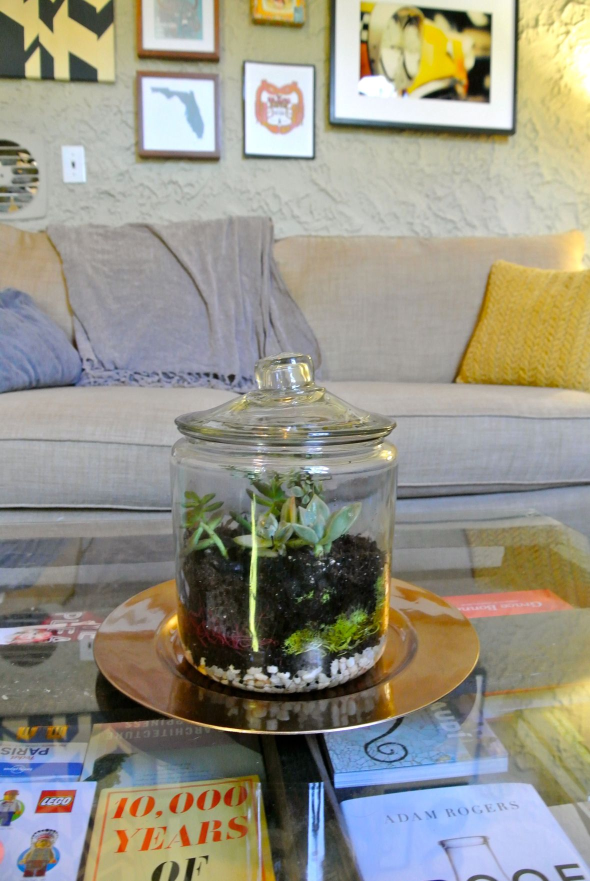 DIY Terrarium - finished product